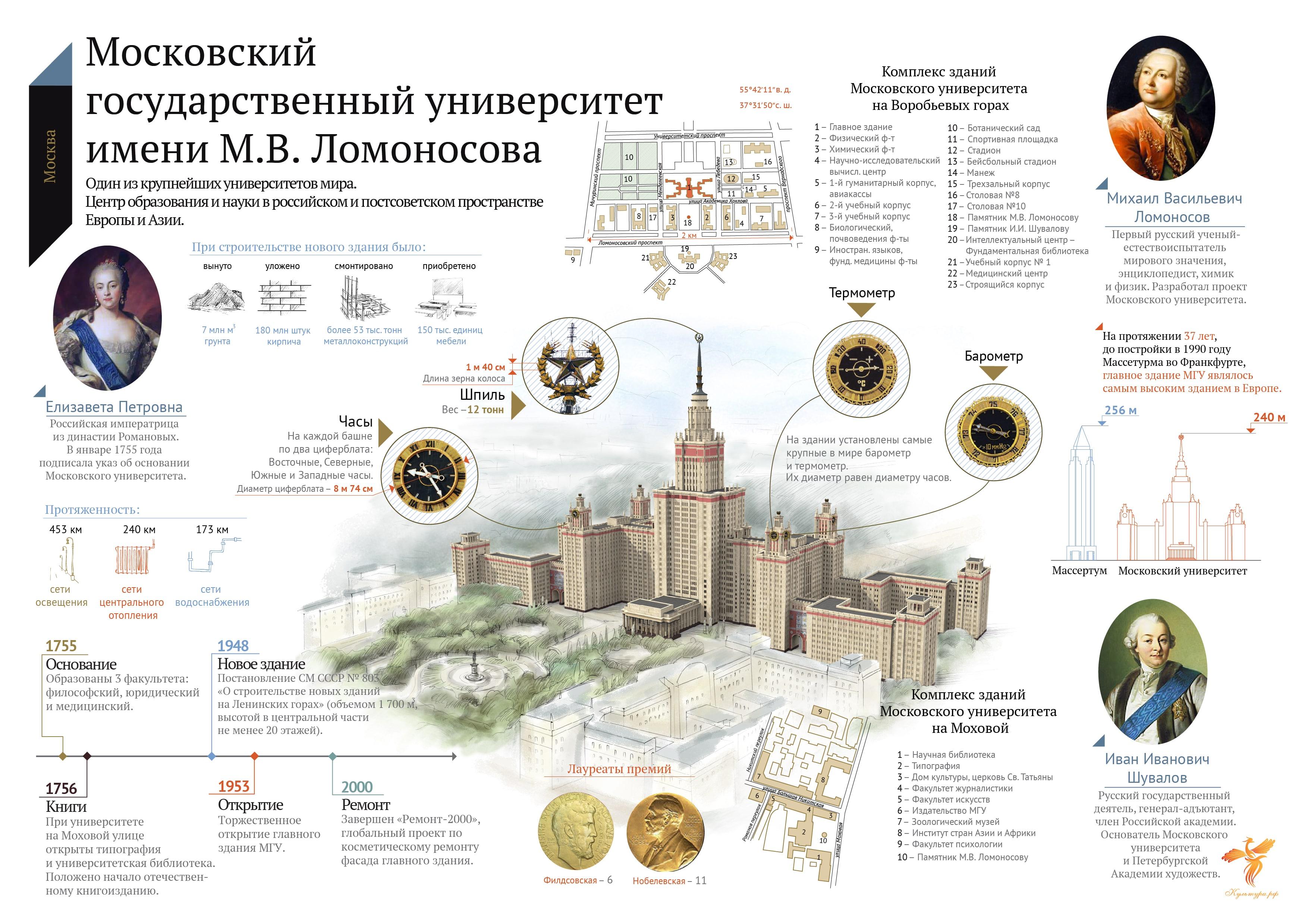 Инфографика МГУ. Источник культура.рф