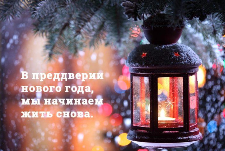 Den-chaja-6-1 | Новогодний