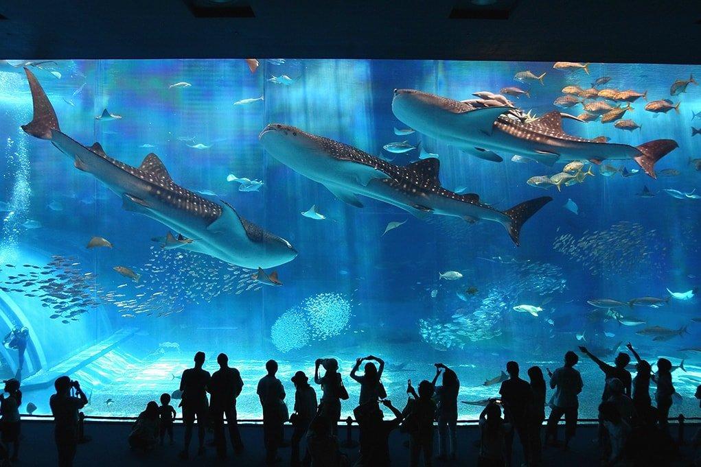 Музеи Москвы – 27 захватывающих музеев столицы