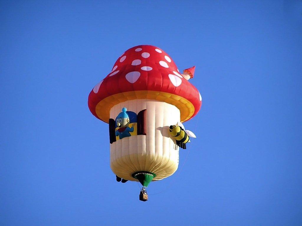 Полет на воздушном шаре в Москве_Гриб