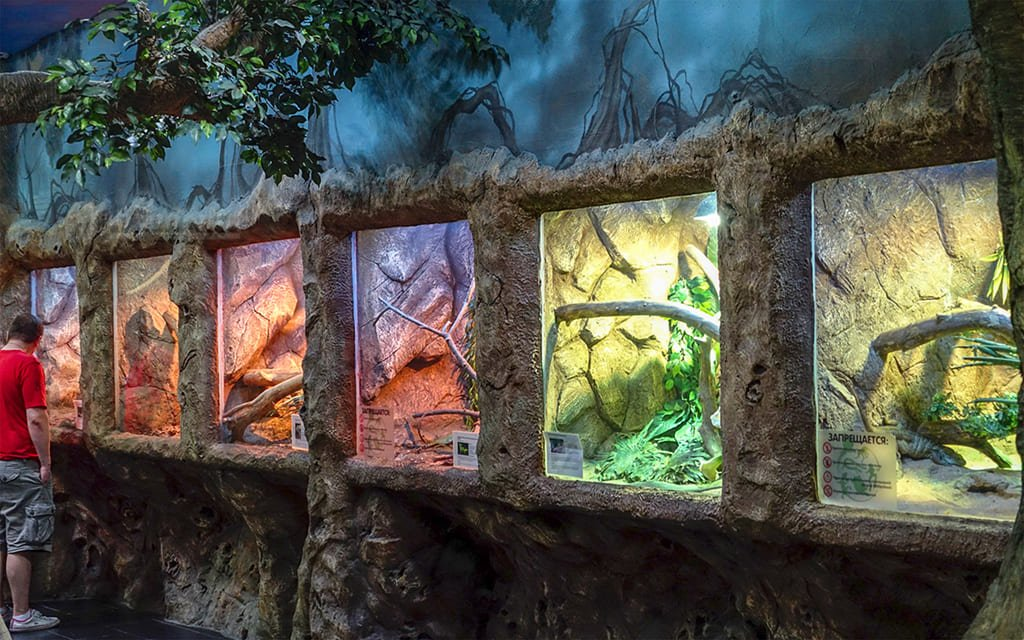 Экзотариум Зоопарка
