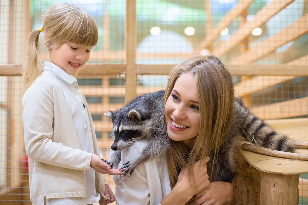 Контактные зоопарки в Москве – адреса и цены 2018