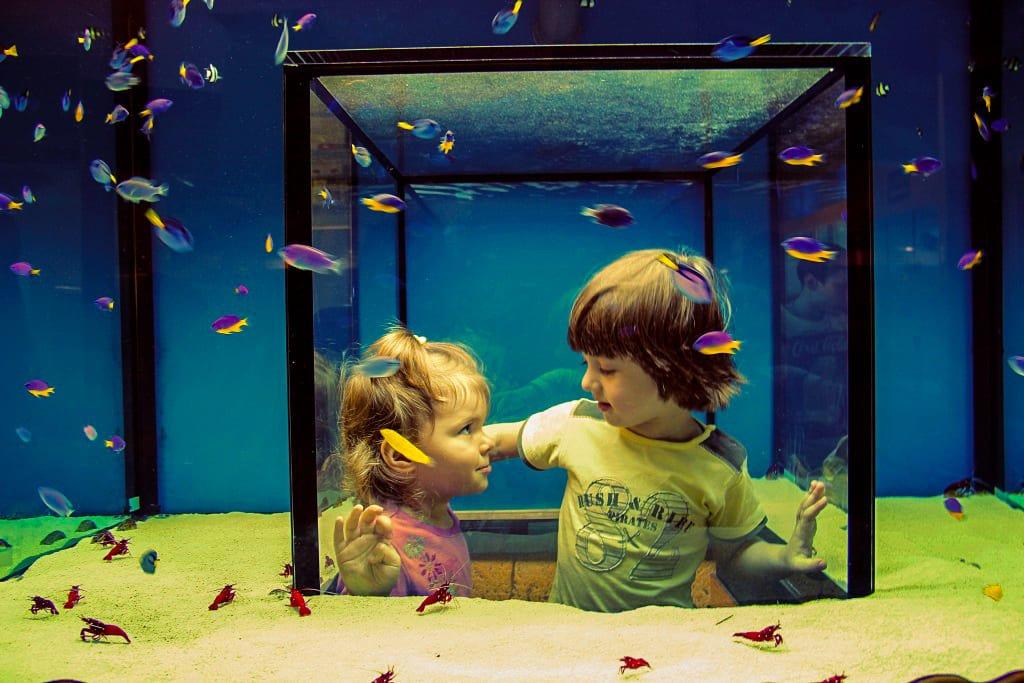 Московский аквариум
