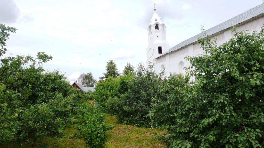 Яблоневый сад на Ивановой горе