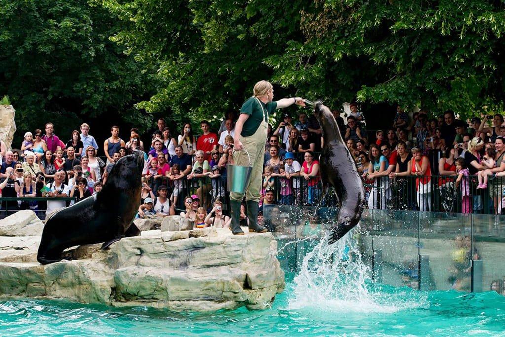 Шенбруннский зоопарк